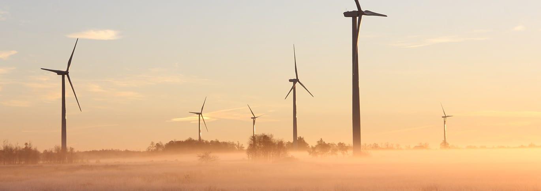6 actions pas chères à fort potentiel en 2022